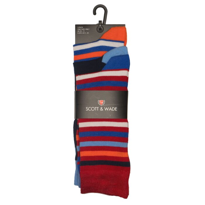 ASSTD SOCK PACK 1004